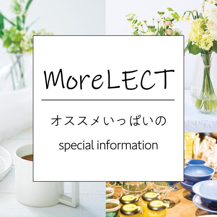 moreLECT